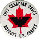 This Canadian Cares, Boycott U.S. Grapes button