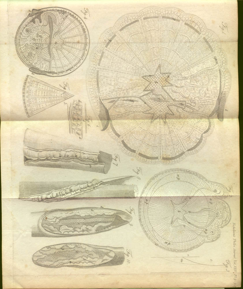 Plate in The Journal of Natural Philosophy, Chemistry, and the Arts, 1809