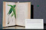 Book opem to green plants