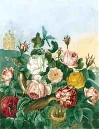 Temple Flora