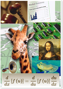 a composite of images to represent the branches. a stock sheet (business), a frog (gull lake), a math equation (math), a circuit board (engineering), a steamy beaker of green liquid (biomedical and physical sciences), a lamb (vet med), and a gavel (Human Resources and Labor Relations)