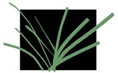 green stripes representing grass on a black background