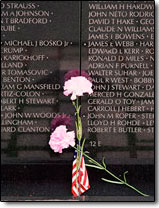 pink carnations in front of Vietnam Memorial